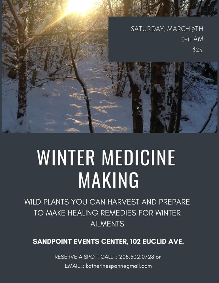 winter medicine making