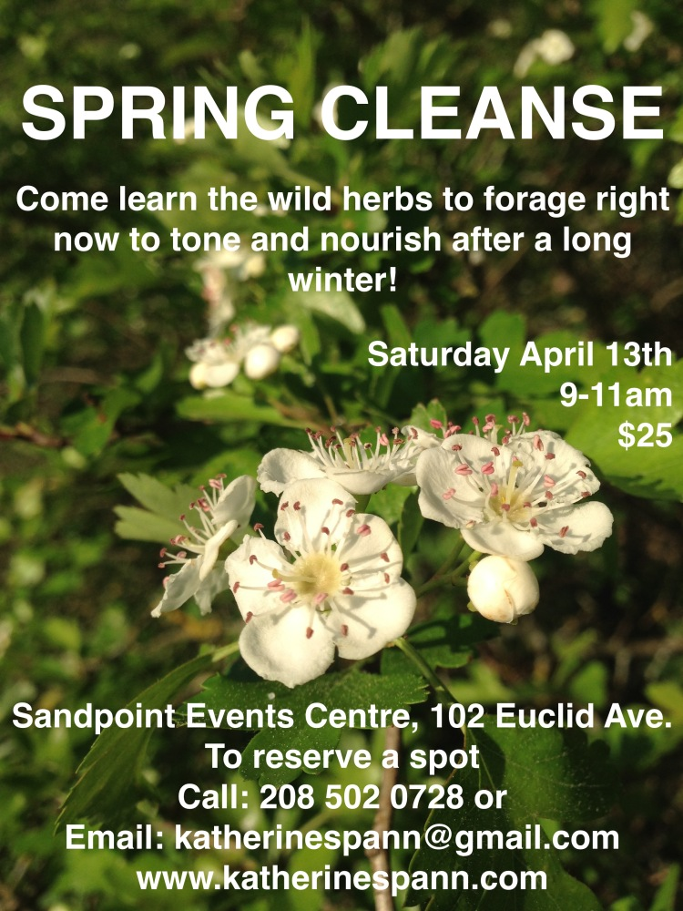 new Spring cleanse poster.jpg