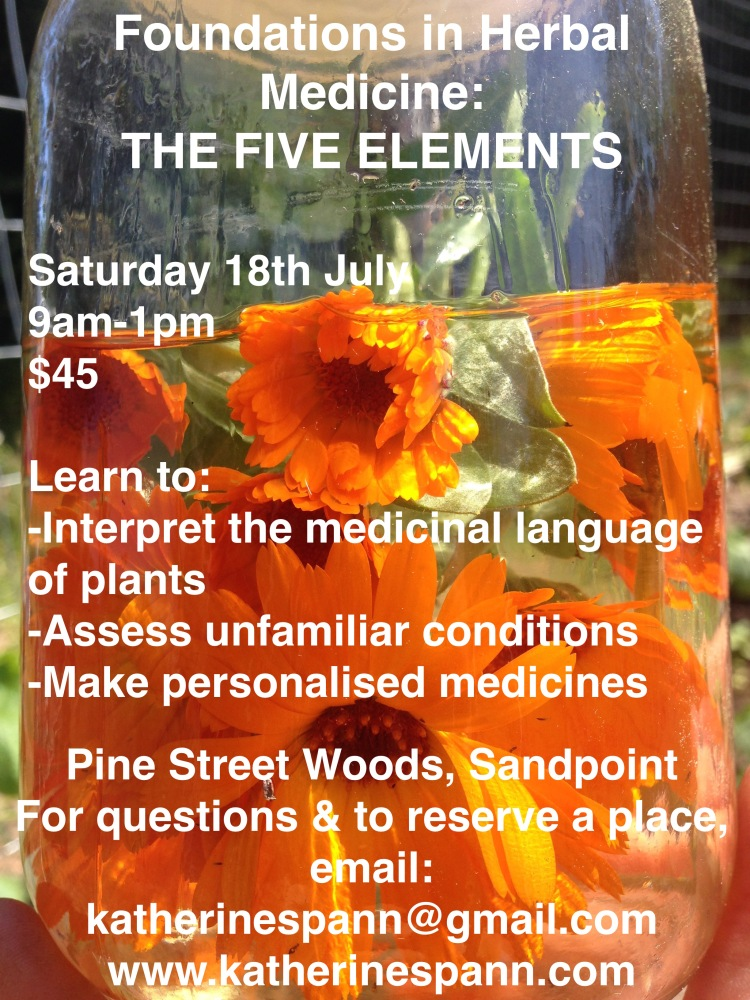five elements class
